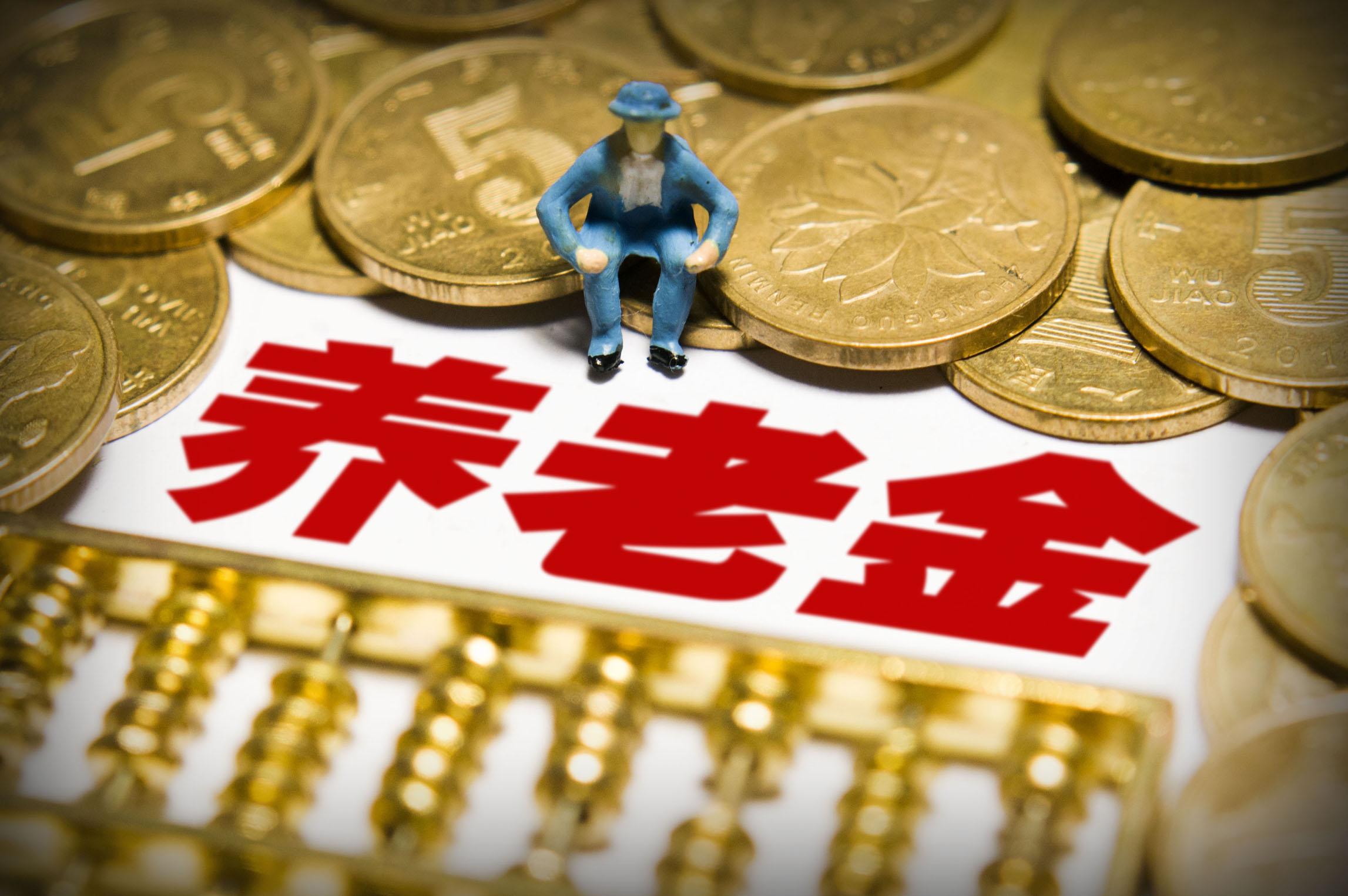 《中国社会保险发展报告》,一个未富先老的中国