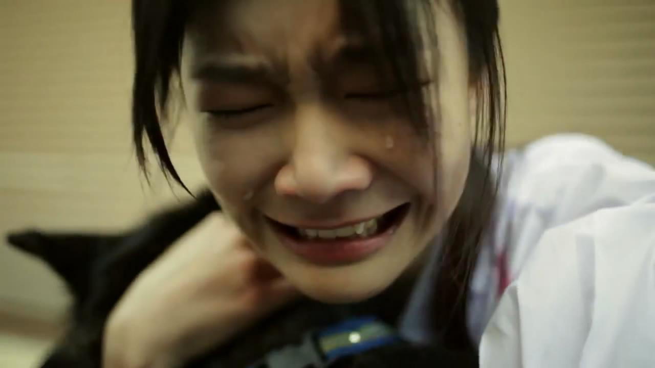 短片 | 泰国最新催泪感人广告《它咬了她,却成就了她》